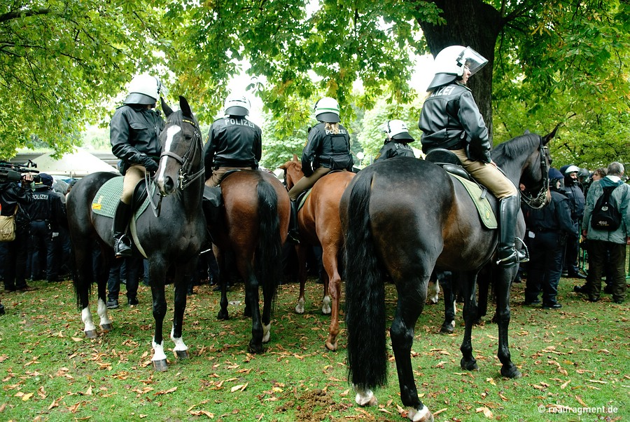 Mounted police on assignment